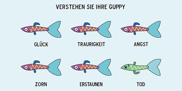 Die Guppys